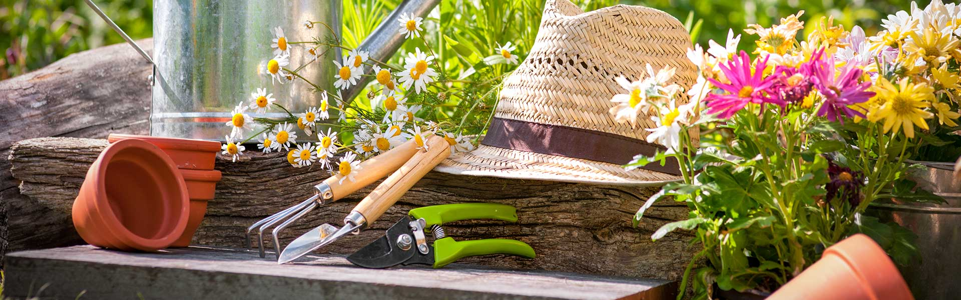 Our experts will improve your garden in no time!